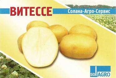 Сорт картофеля Витессе